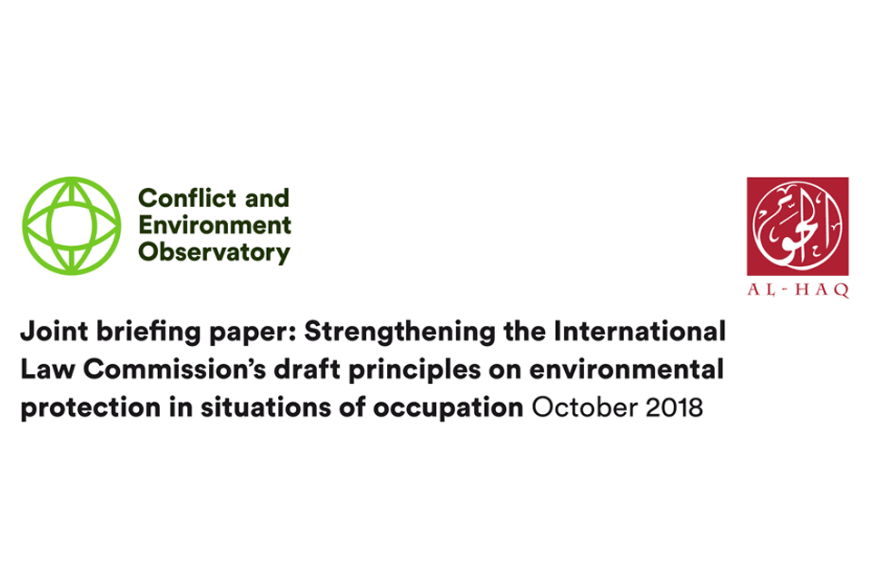CEOBS & Al Haq   Strengthening the International Law Commission's